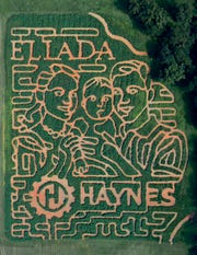 Eliada's annual corn maze is carved into various scenes each year. This year's design is a family of three, emphasizing the agency's focus on family.