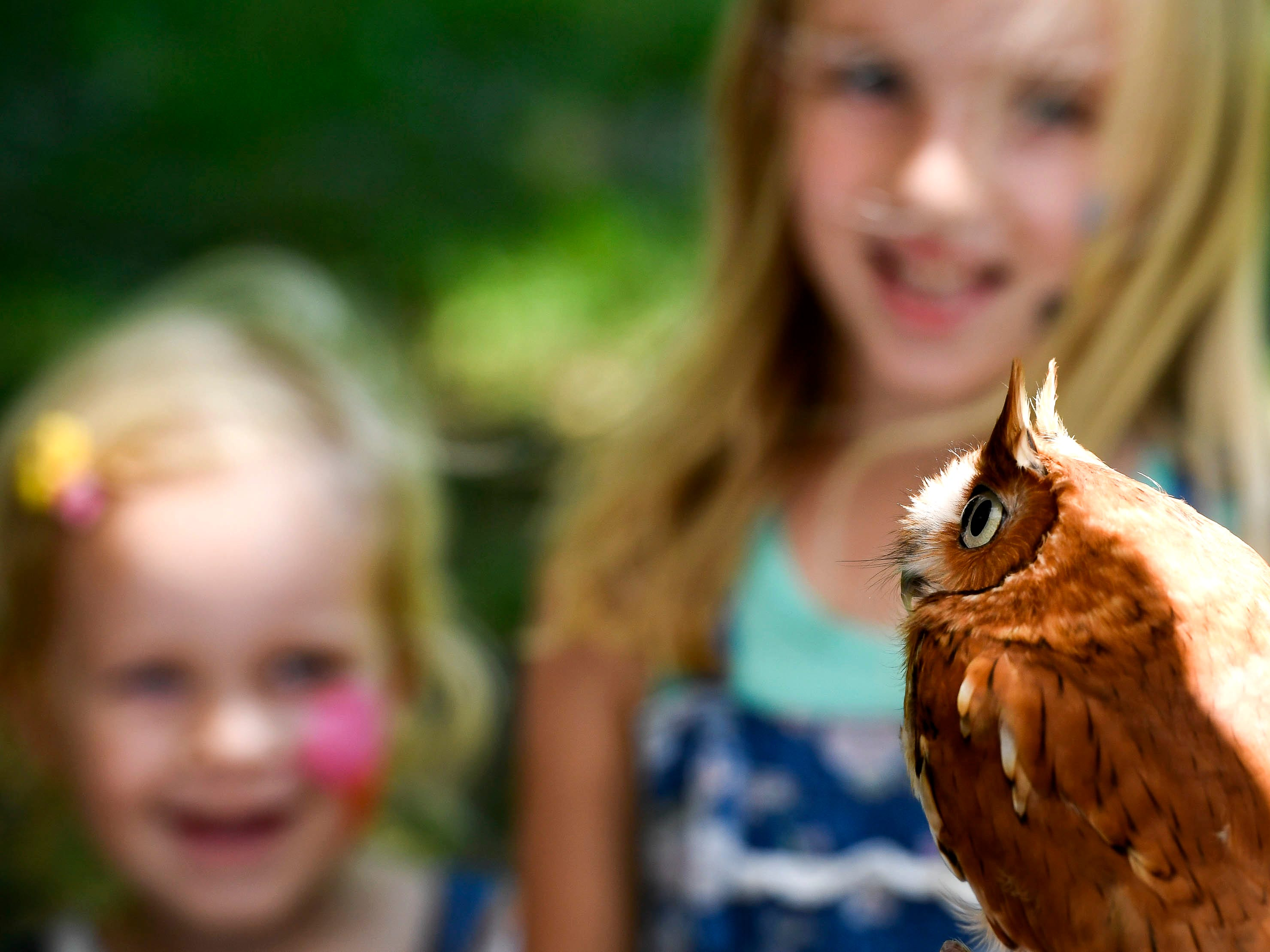 Lillian, 2 years-old, and Maren Pellett , 6 years-old, meet Owlivia the Eastern Screech Owl during the back to school Party in the Park event held at John James Audubon State Park Saturday, August 4, 2018.