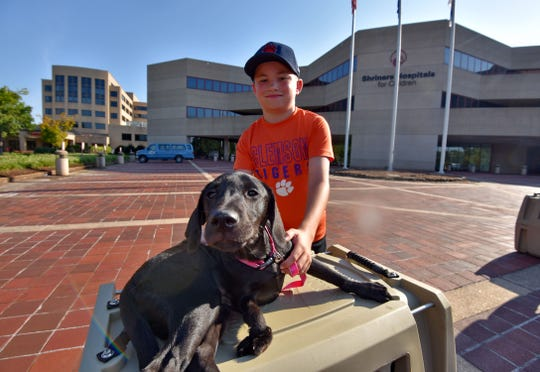 Sam Morrison gets acquainted with Halley. Sam's mom Allison said he had wanted a dog that would sleep on his bed and play fetch with him.