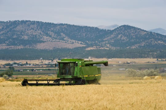 In this Thursday, Aug. 30, 2018 photo, Helena Valley farmer Joe Dooling harvests the last of his barley crop in Helena, Mont. A recent report showed Montana exported around $1.6 billion worth of goods around the world in 2017.