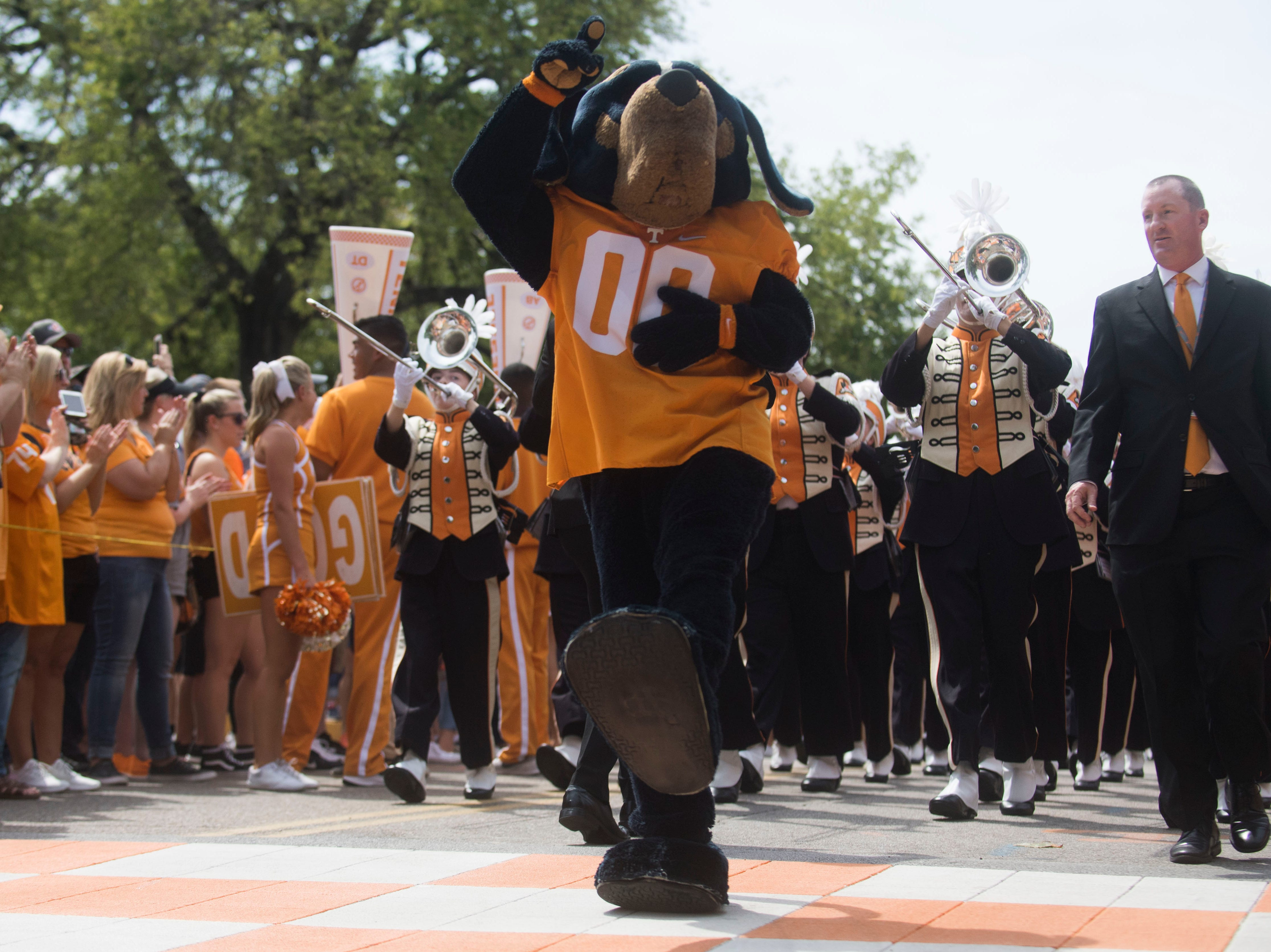 Smokey leads the Pride of the Southland Band down the Vol Walk before a Tennessee Vols football game against ETSU outside Neyland Stadium Saturday, Sept. 8, 2018.