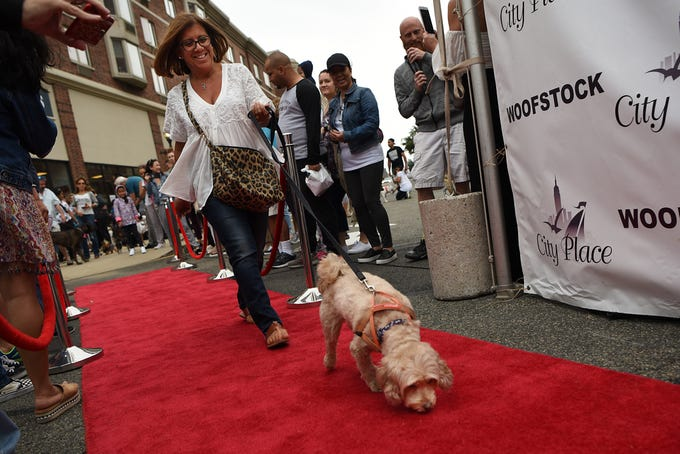 A woman and her dog strut down the red carpet at Woofstock 2018, a benefit for Bergen County animal rescue organizations, at City Place in Edgewater on Saturday September 8, 2018.