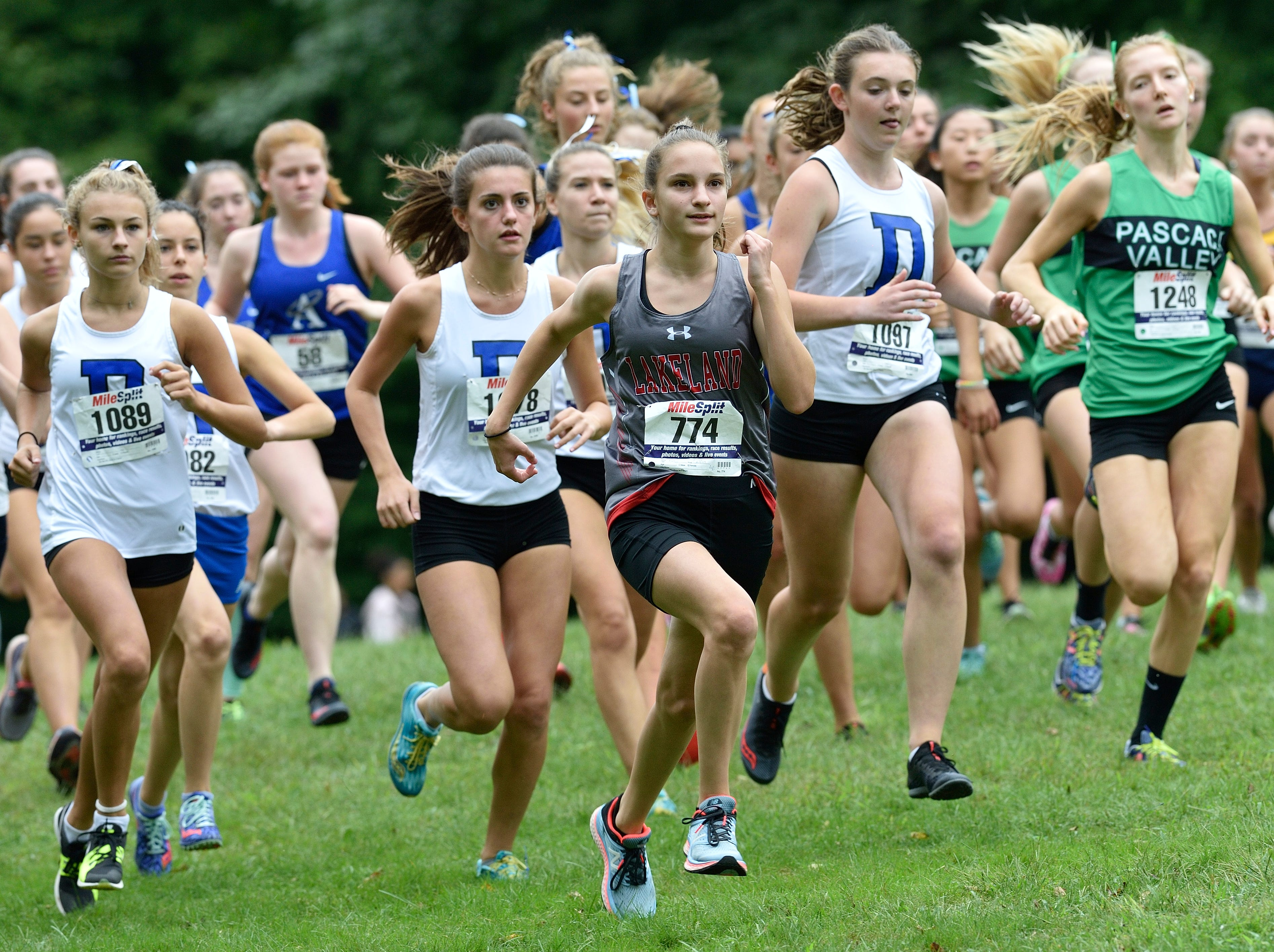 The start of the girls varsity B cross country race at Darlington County Park in Mahwah.