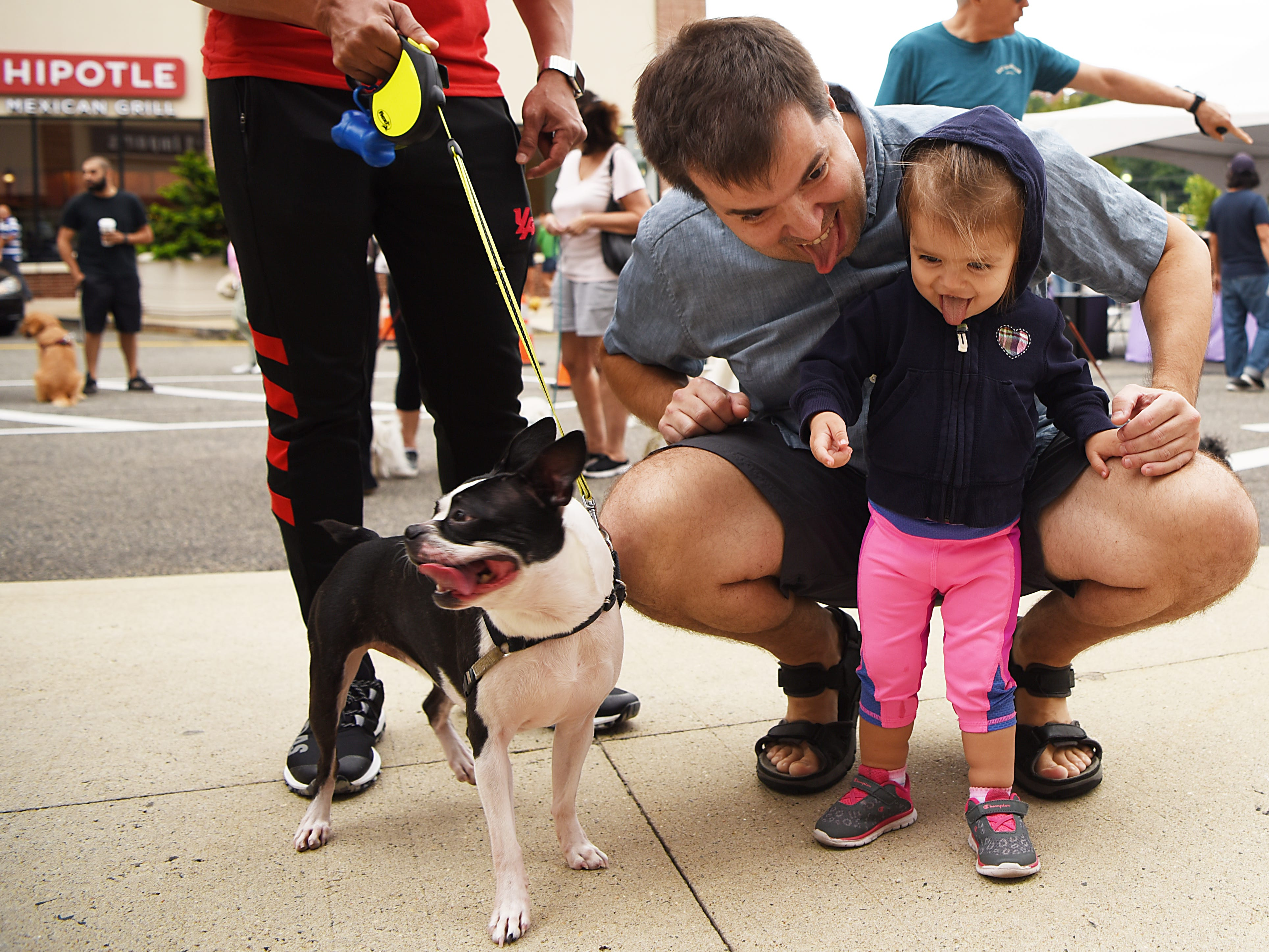 (From left) Bella - a four year old Boston Terrier, Tom Zieba and Mila Zieba - 20 months old, all stick their tongues out.  Woofstock 2018, a benefit for Bergen County animal rescue organizations, at City Place in Edgewater on Saturday September 8, 2018.