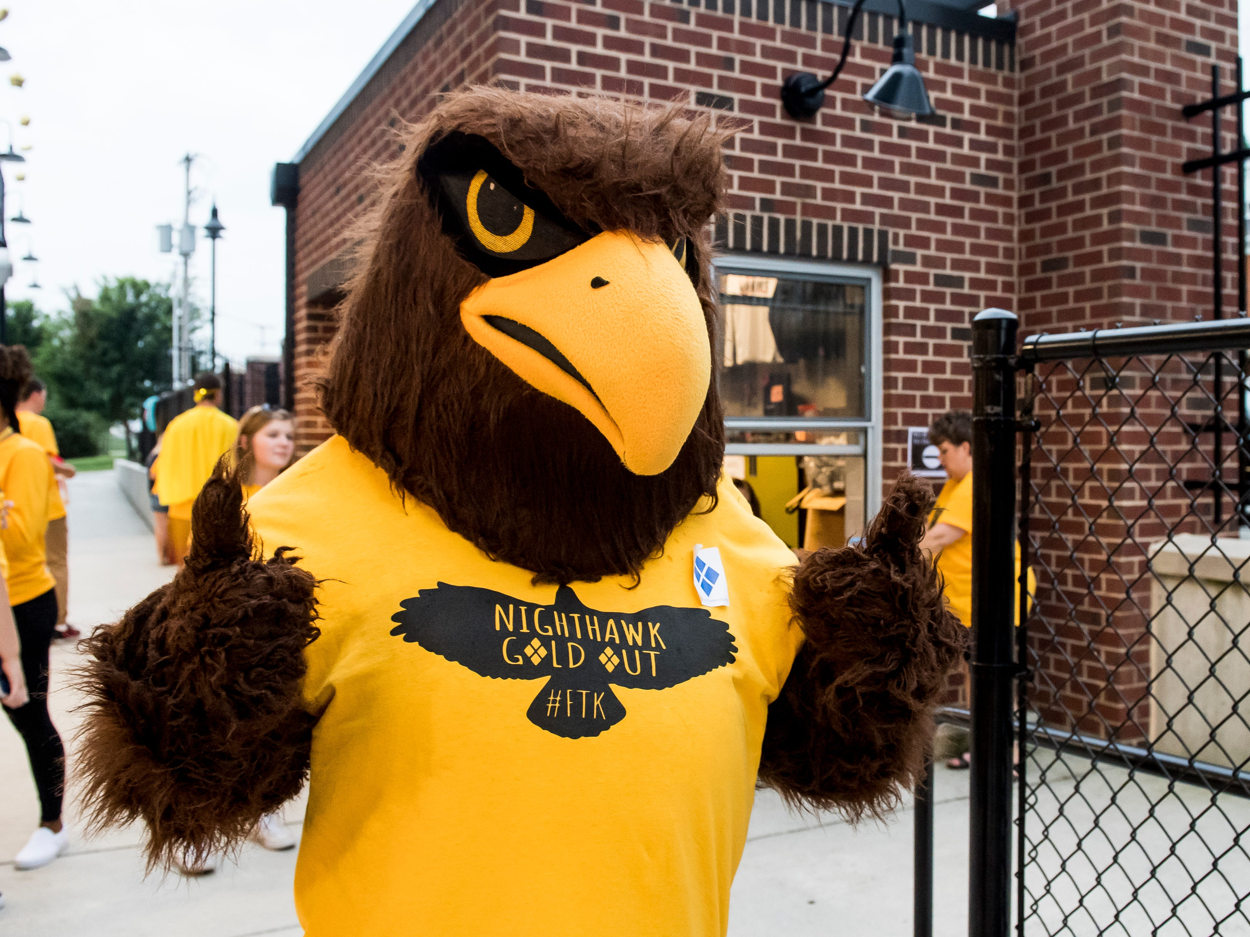 "The Hanover Nighthawk mascot is decked out in gold for the special ""Gold-Out"" event to raise raise money and awareness for pediatric cancer prior to the football game on September 7, 2018."