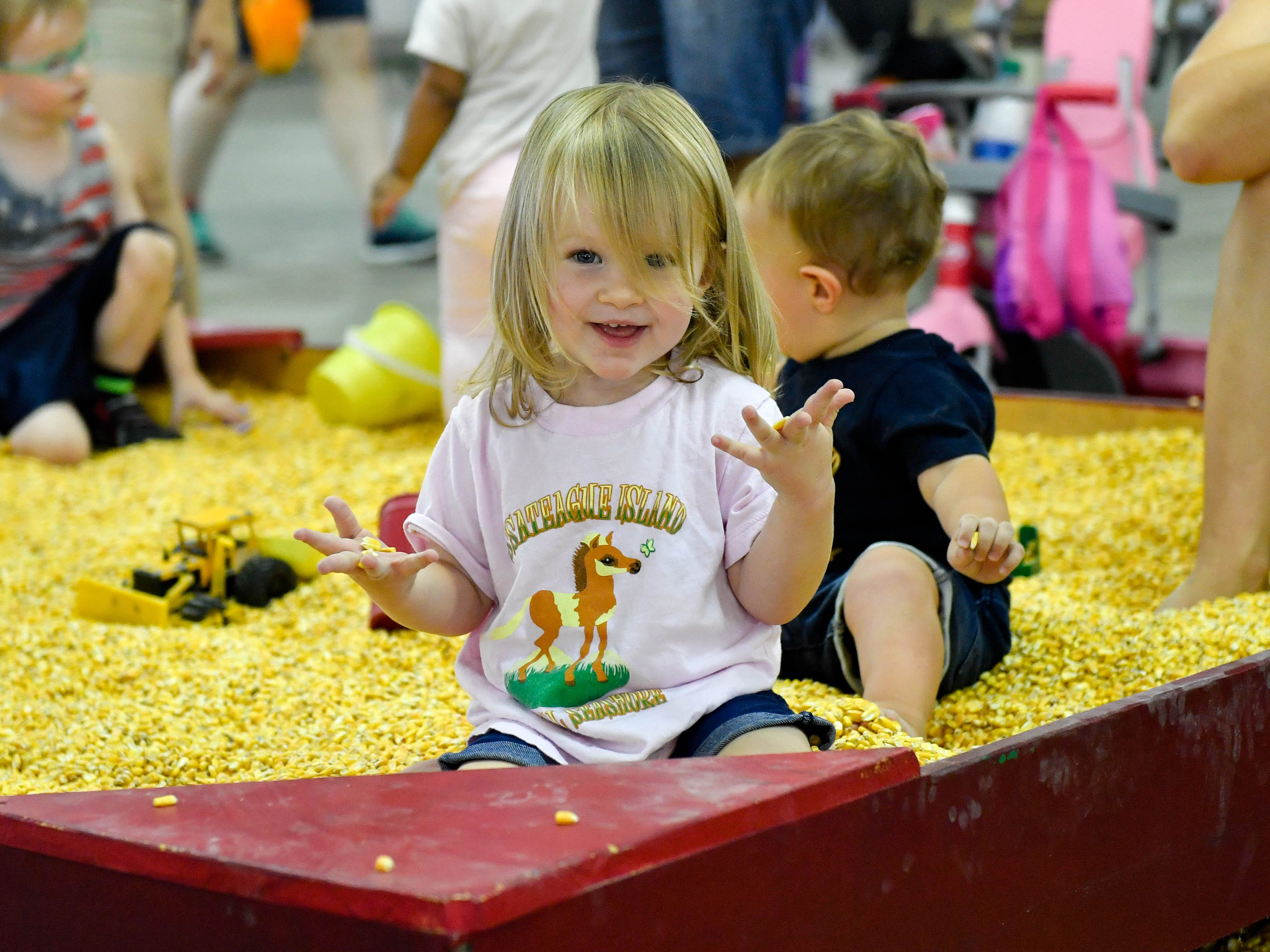 The petting zoo includes a corn-box that children can play in for hours.