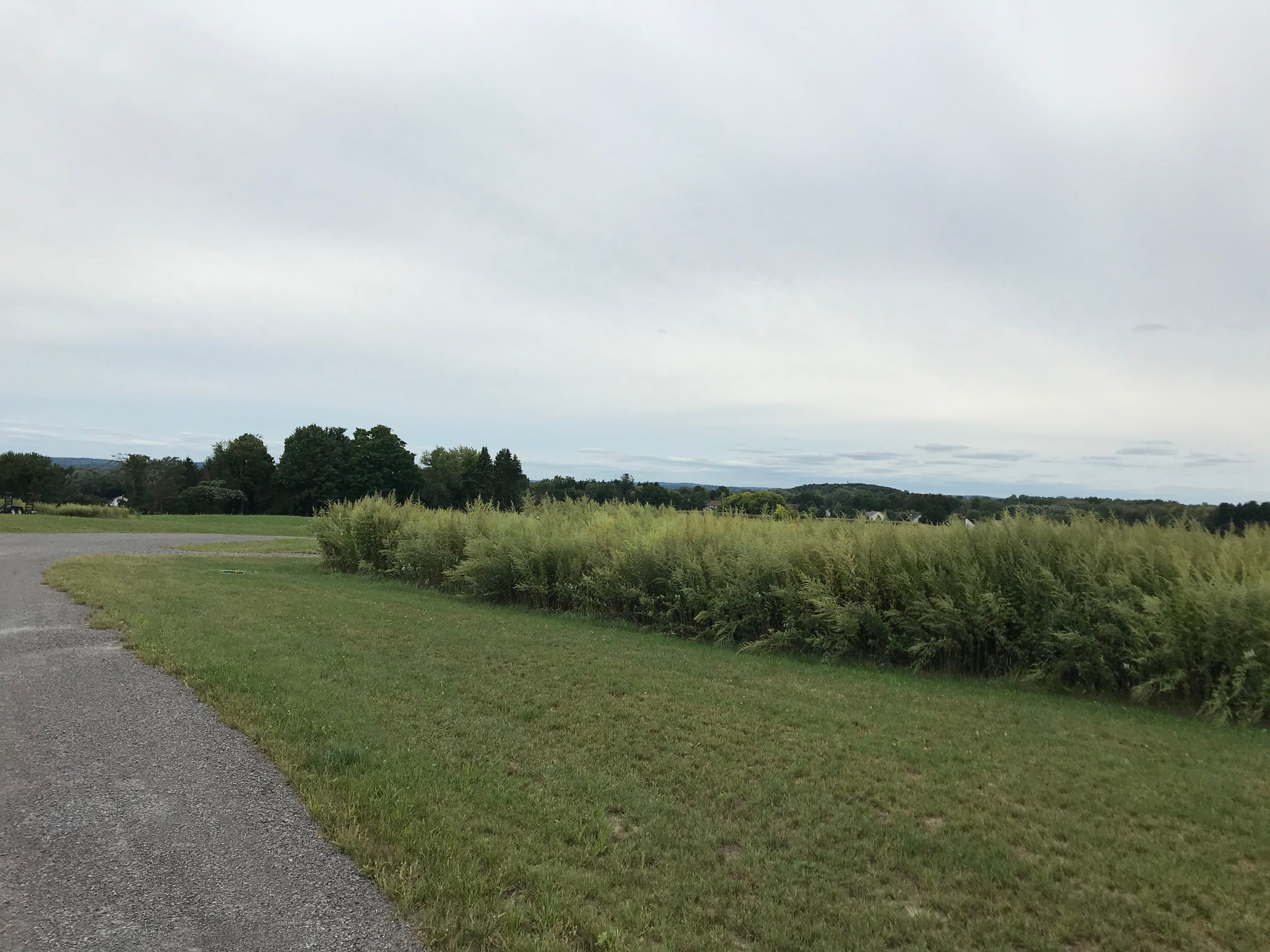 One of the views from the top of the hill at Oak & Apple Cidery in Penfield.