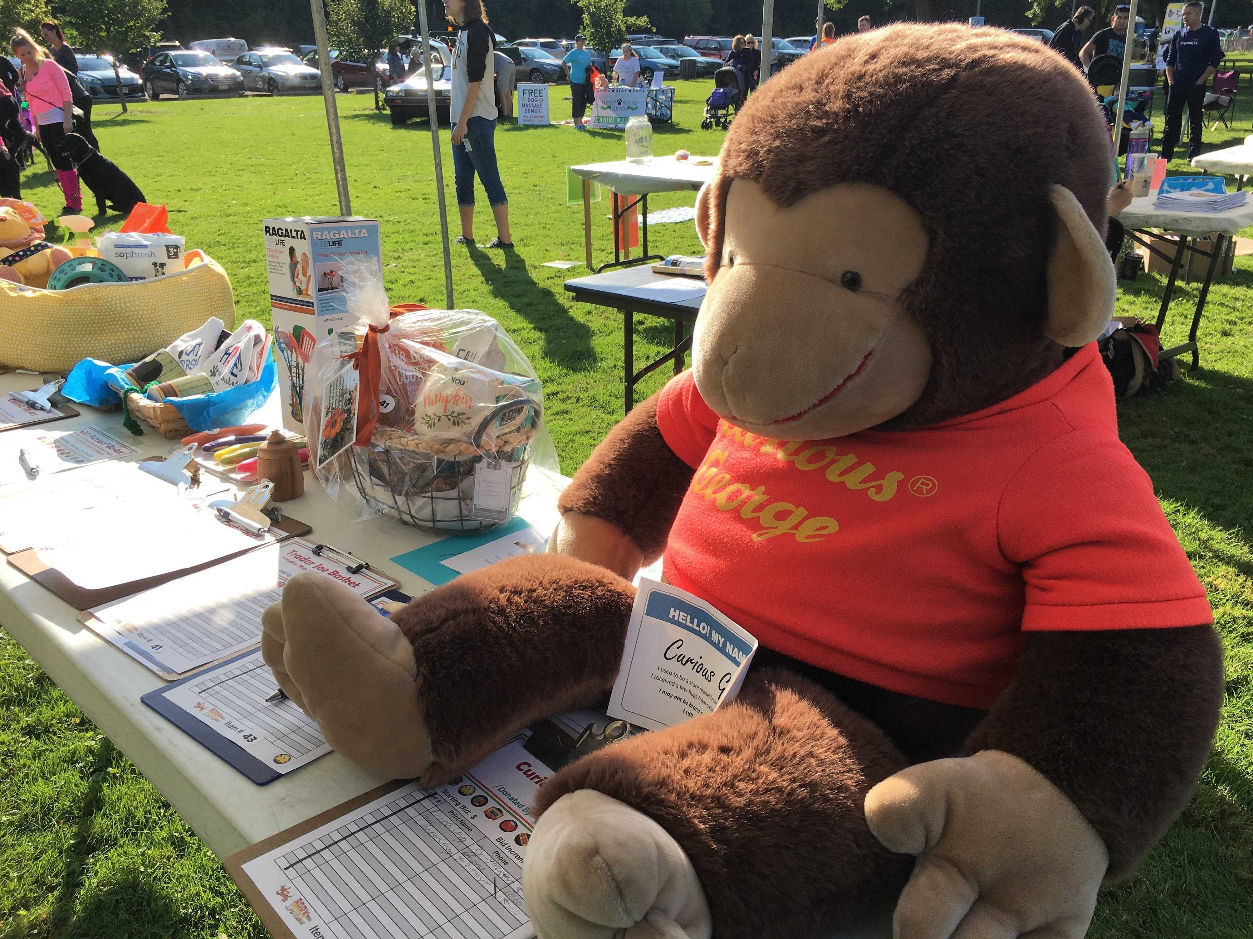 Silent auction items raised funds at Saturday, Sept. 8 at Bark to the Future. The 30th annual Tri-County Humane Society Companion Walk celebrated the decade the shelter was born — the 1980s — while raising money for the nonprofit at Wilson Park in St. Cloud.
