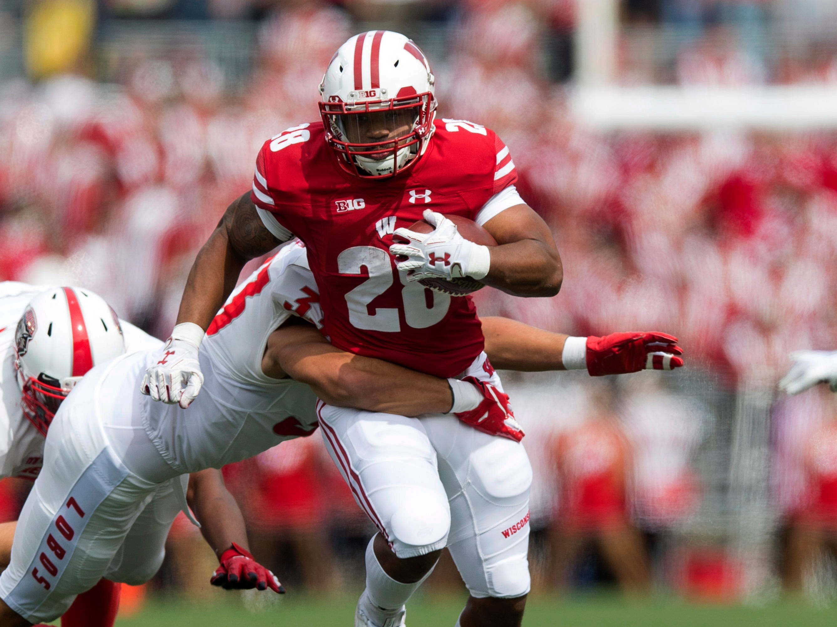Wisconsin running back Taiwan Deal rushes with the football during the first quarter against New Mexico.