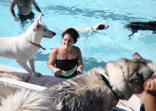 11 Dog Swim