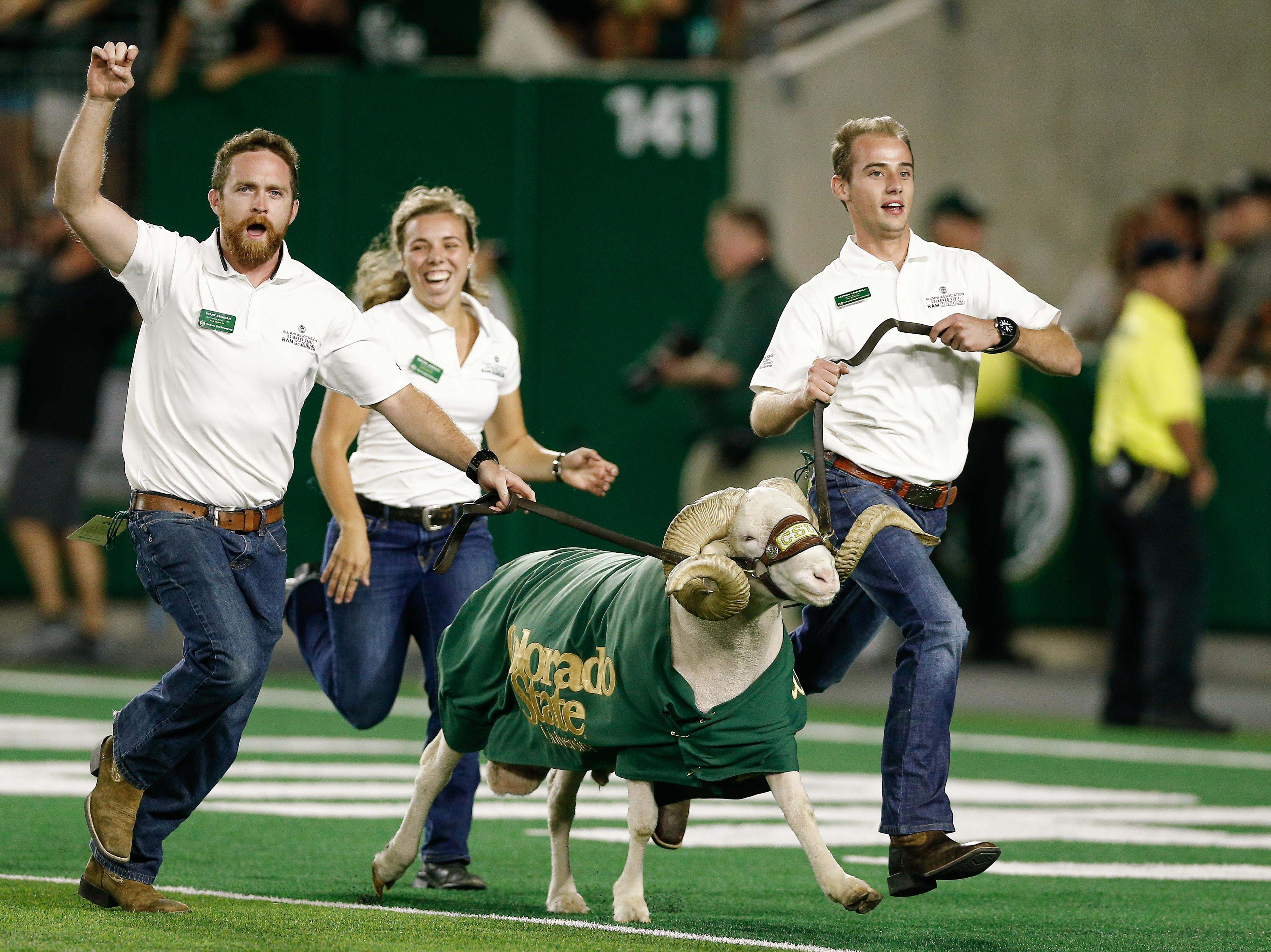 Week 2: Handlers run CAM the RAM after a touchdown in the fourth quarter against the Arkansas Razorbacks.