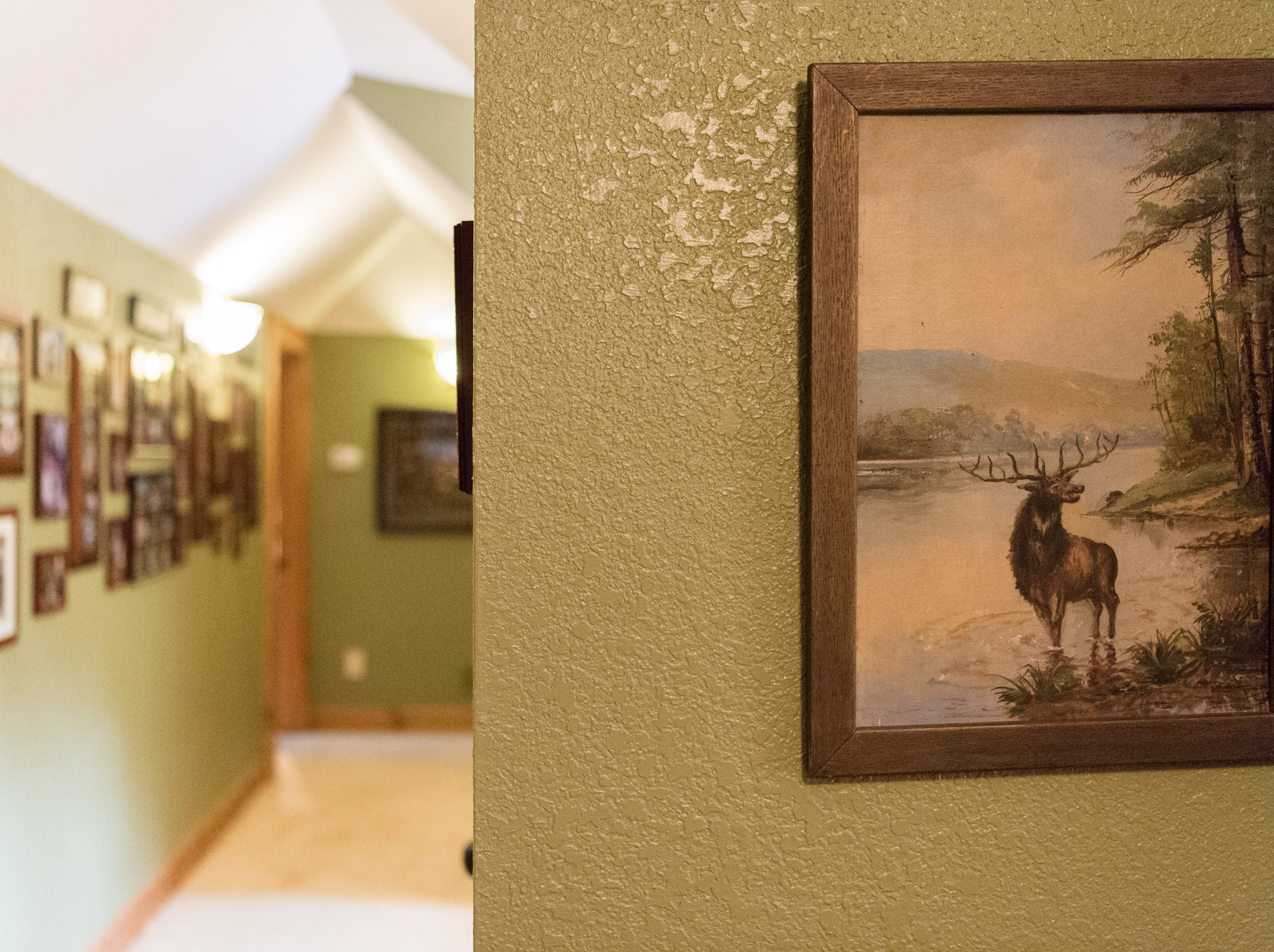 Artwork in a hallway on the third floor of Dan and Belle Fangmeyer's log cabin in Waynesville.