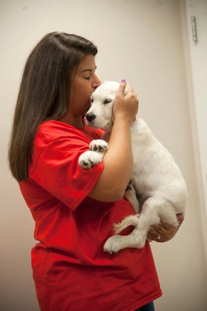 Tara Fitzpatrick of Delran kisses her English Cream Golden Retriever named Bailey at the Mount Laurel Animal Hospital.