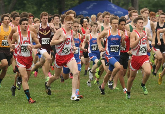 The Shelby Whippets have established themselves as a top team which included a team win at the Tiffin Cross Country Carnival earlier in the year.