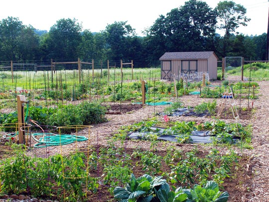 The Community Garden at South Branch Preserve will host an Open House and Volunteer Day on Saturday, Sept. 22, 2018.
