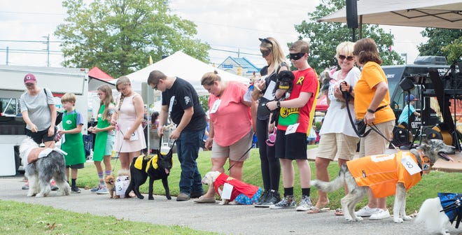 The Dog Costume Contest was a hit at the Salty Dog Festival in Goodlettsville on Sat., Sept. 8.