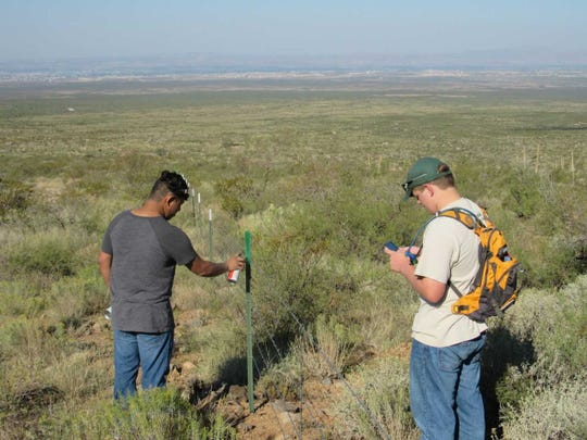 Two Eagle Scout candidates paint the tops of a Bureau of Land Management boundary fence to blend in with the landscape during a previous National Public Lands Day event.