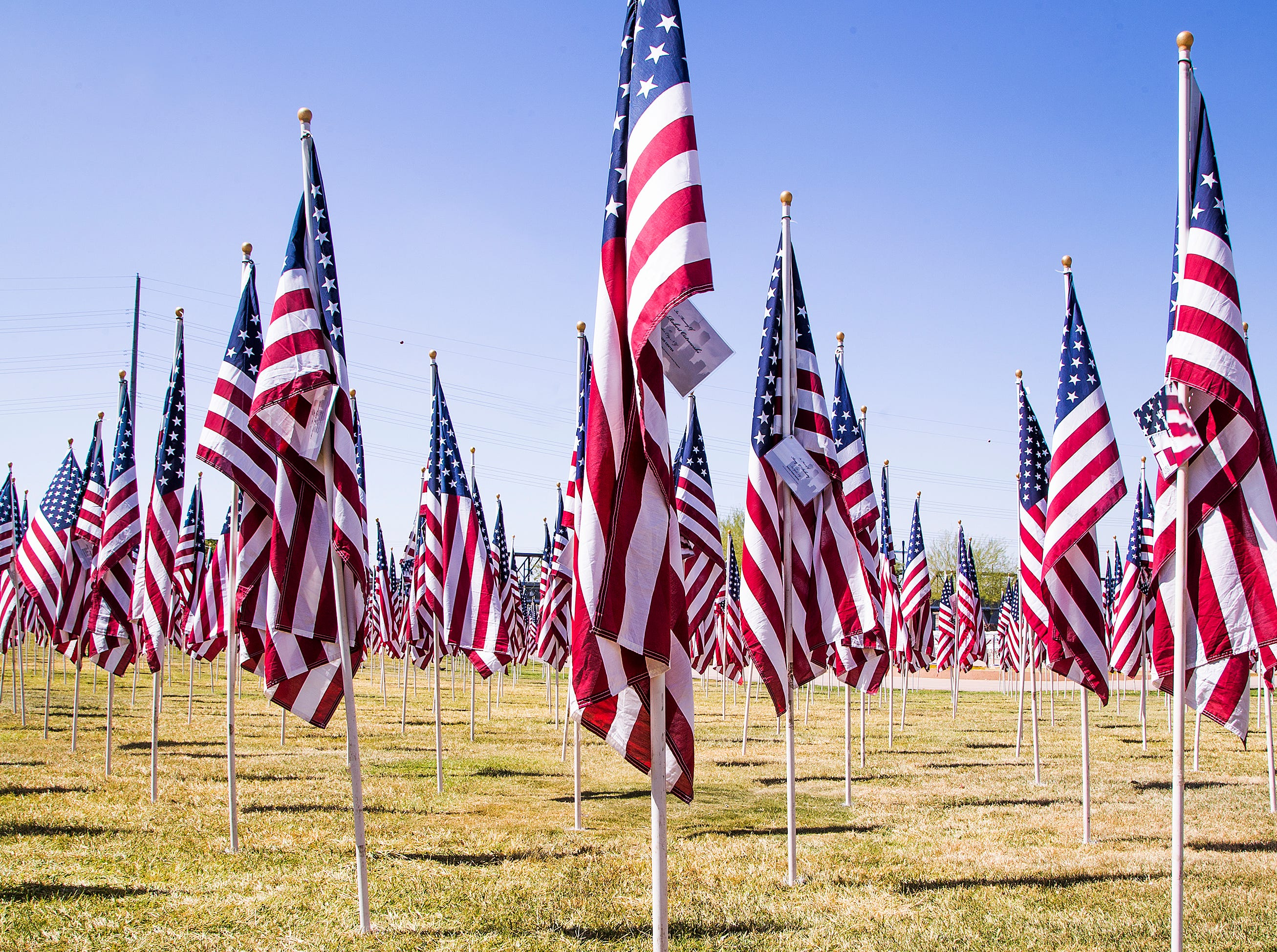 Almost 3,000 flags have been placed in the Healing Field at Tempe Beach Park to honor those killed on Sept. 11, 2001.