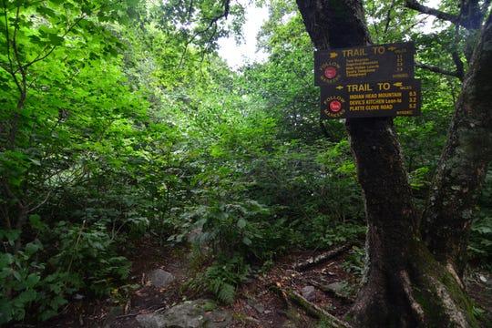 The trail to Jimmy Dolan Notch.