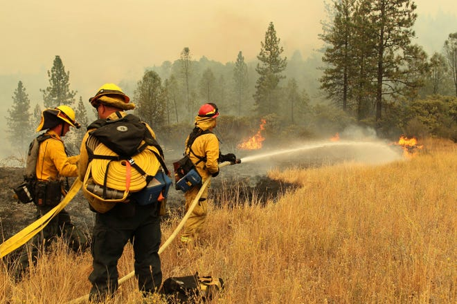 In this Friday, Sept. 7, 2018 photo, fire fighters from Yocha Dehe Fire Department work together to put out a grass fire along I-5 at Earl Sholes Memorial Bridge near Shasta-Trinity National Forest, Calif. A roaring wildfire that has shut down a stretch of a major interstate in a rural area near the California-Oregon border has nearly doubled in size.