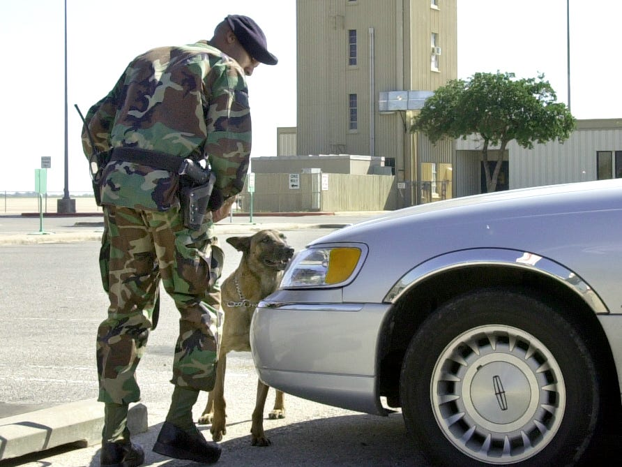 U.S. Air Force Staff Sgt. Jerome Cooke guides military working dog Waldo around vehicles stranded in the short-term parking lot at Mathis Field on Sept. 13, 2001. Goodfellow Air Force Base assisted with explosive-sniffing dogs so the airport could be in compliance with the Federal Aviation Administration security amendment guidelines of either removing or inspecting cars within 300 feet of the building.