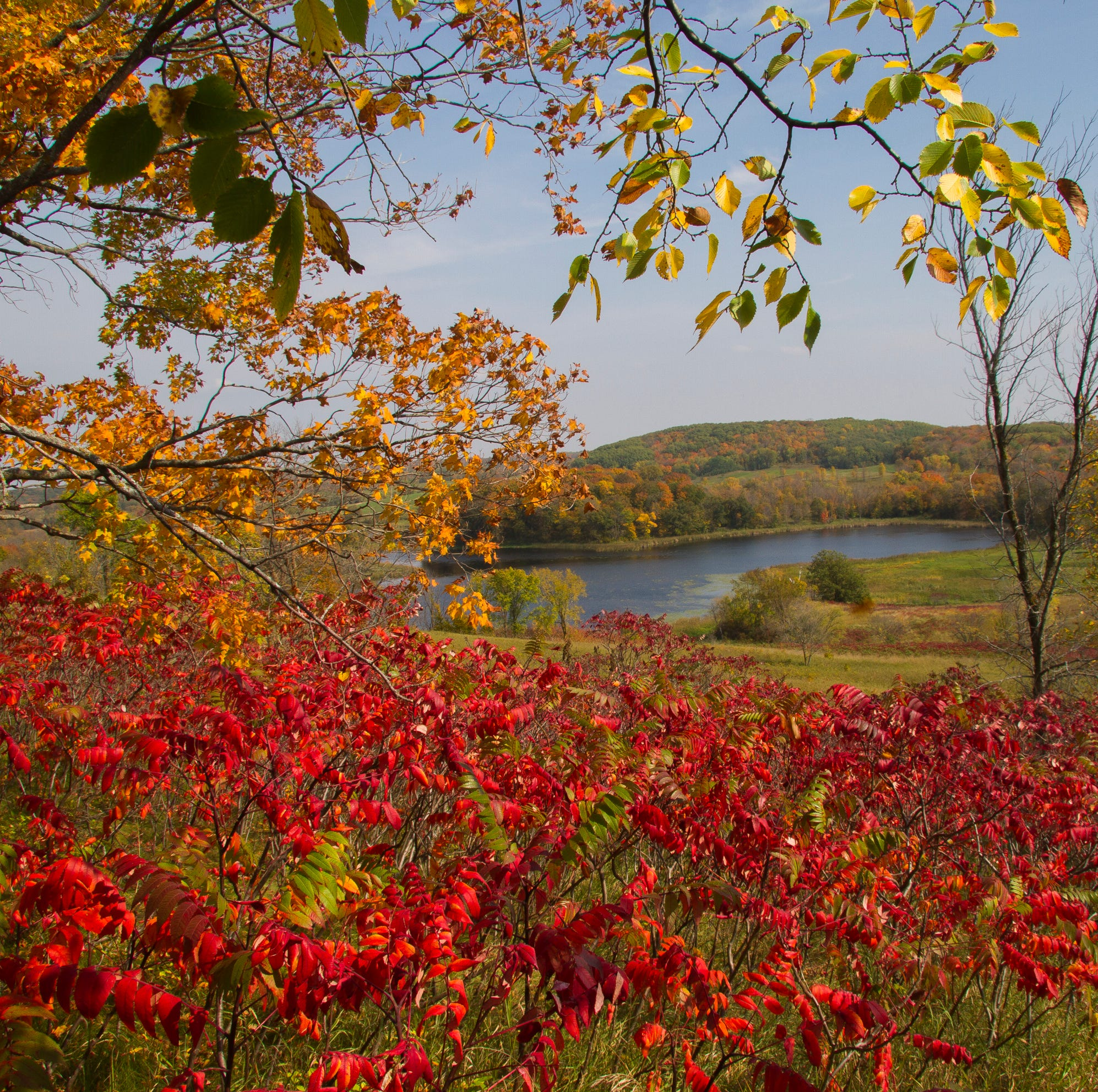Ravenous on a Rainbow Route? Where to eat and drink on your fall foliage tour