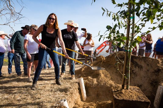 Jacqui Helping Plant A Tree