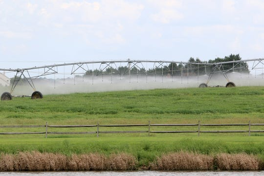 During the summer and warm months, the Town of Middletown sends about 100 million gallons of treated wastewater effluent to farms, area golf courses, and sports complexes through spray irrigation rigs.