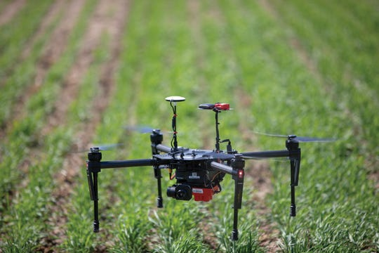A DJI Matrice drone flies inches above a field during a test flight at UW–Madison's West Madison Agricultural Research Station.
