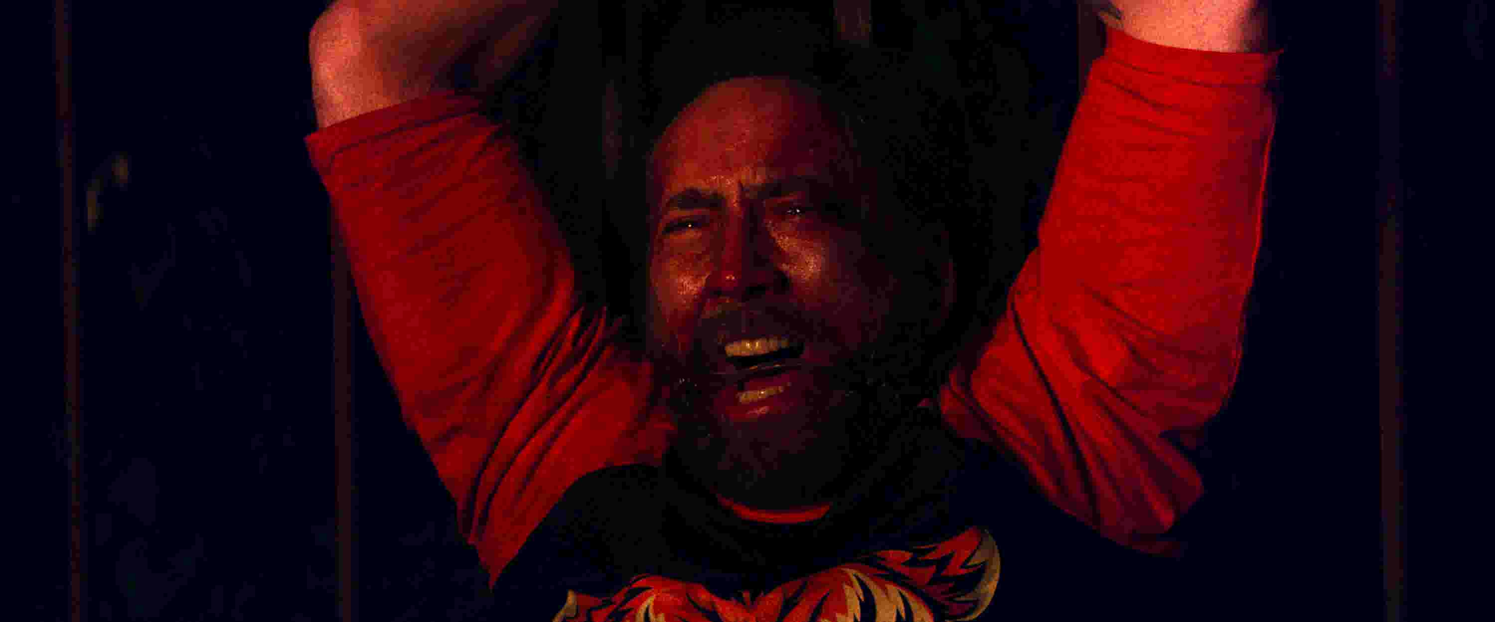 The Mothership: Why Nicolas Cage is a national treasure