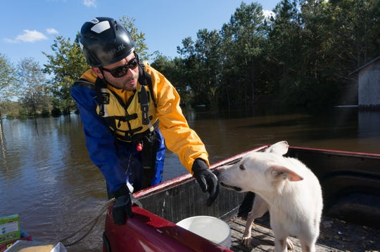 An ASPCA volunteer rescues a dog from floodwaters.
