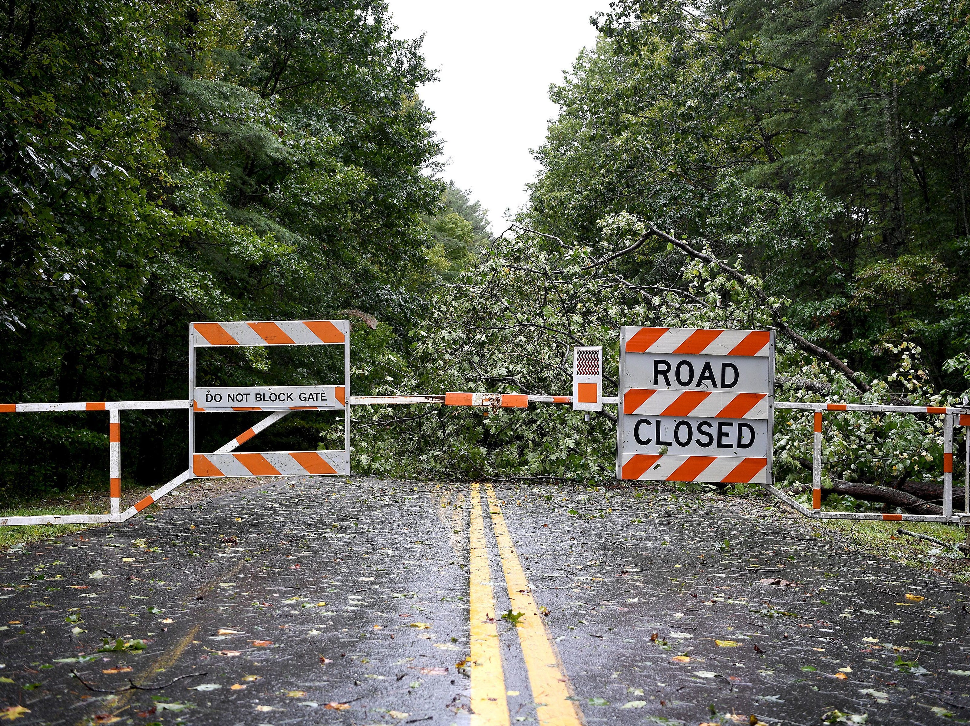 An uprooted tree blocks a section of the already-closed Blue Ridge Parkway near Biltmore Forest on Sept. 12, 2017, following Monday night's storm caused by Hurricane Irma.