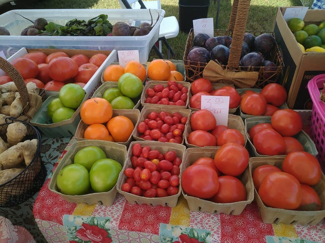 Downtown Melbourne Farmers' Market is held from 10 a.m. until 3 p.m. the first and third Saturdays of the month at the city's Riverview Park.