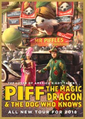 Wearing a shiny dragon costume helped turn London magician John Van der Put into a wildly successful stage performer known today as Piff the Magic Dragon. Piff, along with a Chihuahua named Mr. Piffles and a showgirl named Jade Simone, will perform at the Rising Star Casino in Rising Sun, Ind. for a single 8 p.m. performance on Sept. 15.
