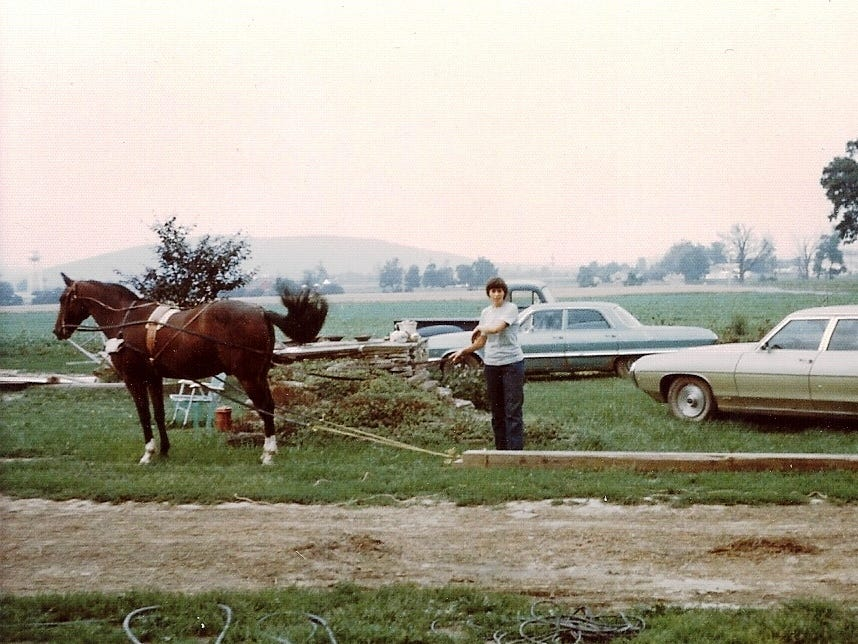 There were many barn beams and telephone poles scattered out in the fields at Wyldwyn Farm in Big Flats following the 1972 flood. Carol Christian said she used her very patient horse, Diamond, to gather them from the fields