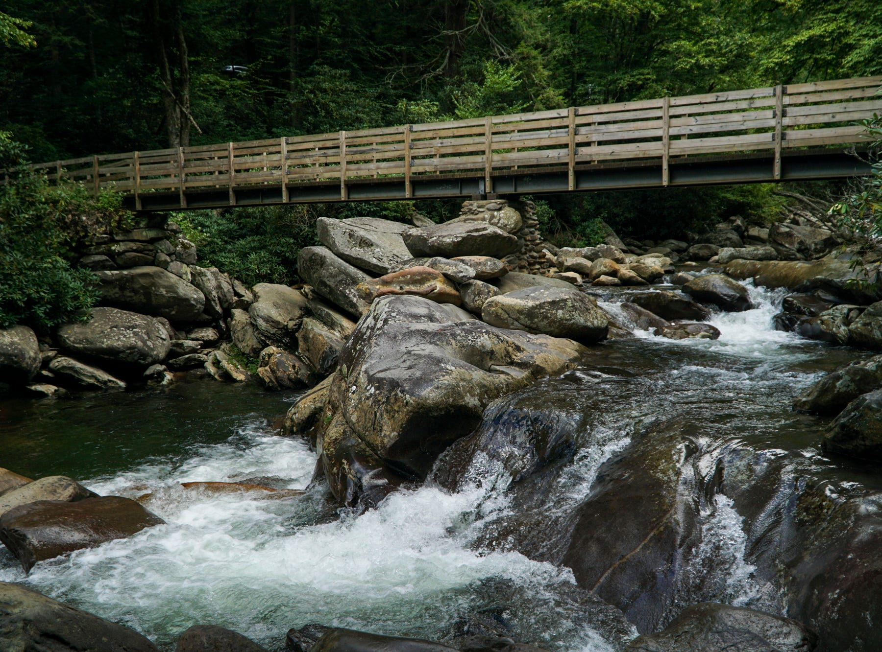 The Chimney Tops trail starts by crossing Road Prong Creek just off Newfound Gap Road.