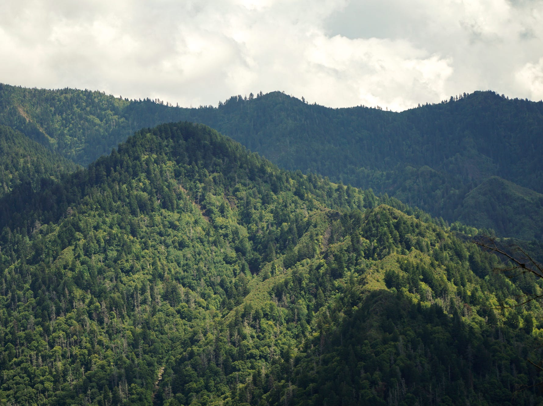 The Chimney Tops trail's new viewing platform offers a broad view of the surrounding ridges, but lacks the panoramic views of the now closed pinnacles.