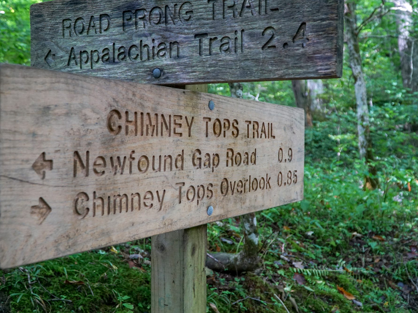 The sweeping views, frequent river crossings and short length of the Chimney Tops trail makes it a popular destination for hikers in the Great Smoky Mountains National Park.