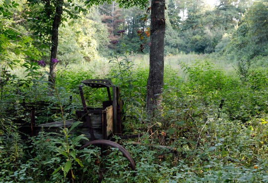 A wooden wagon sits in the weeds at the Mambourg Lodge in rural Pleasant Township.