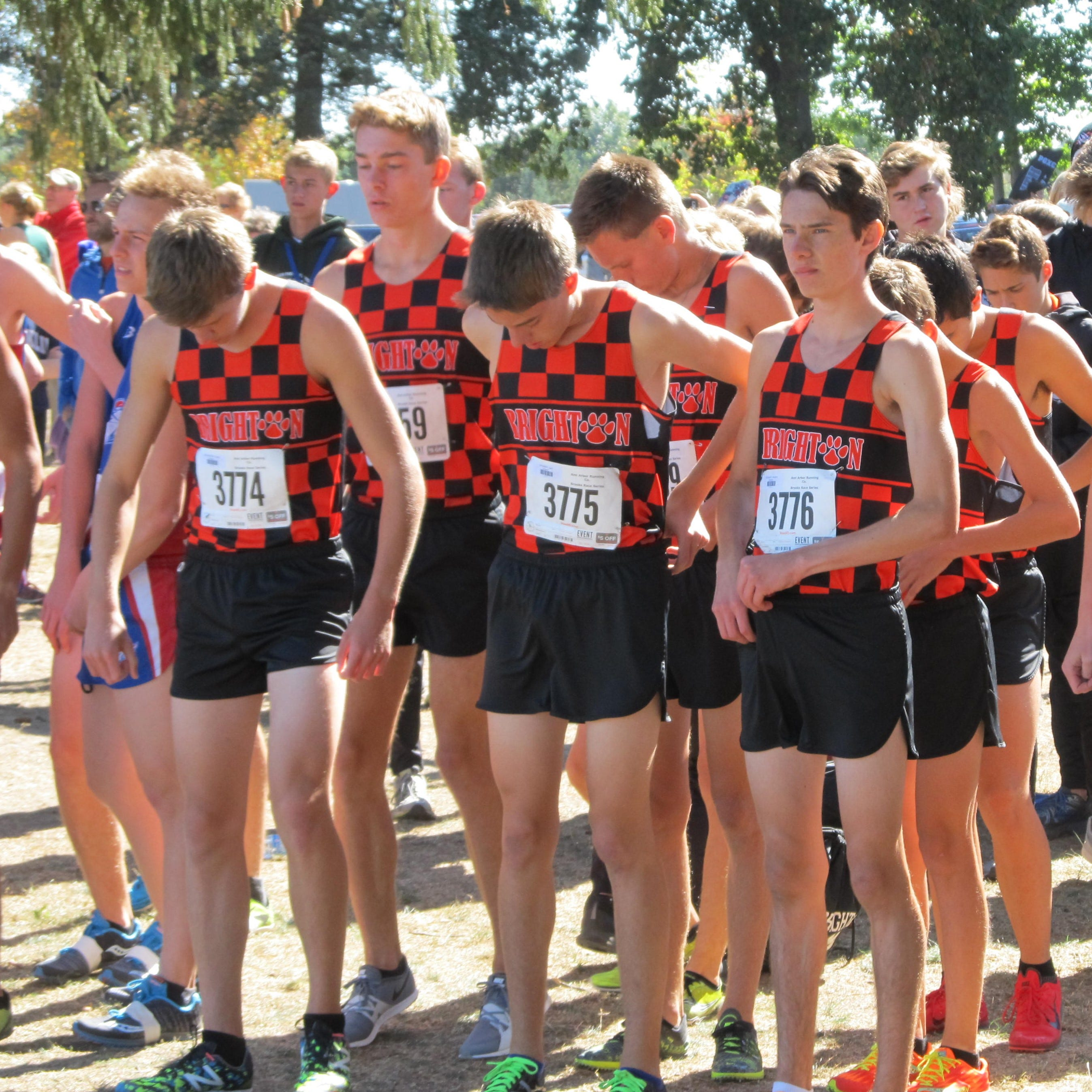 A look at Livingston County's 2018 boys cross country teams