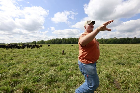 Farm Manager Aaron Niemann gives a tour of his farm for USA TODAY NETWORK-Wisconsin's Mitch Skurzewski Thursday, August 30, 2018, at Emerald Lane Angus farm in Edgar, Wis. T'xer Zhon Kha/USA TODAY NETWORK-Wisconsin