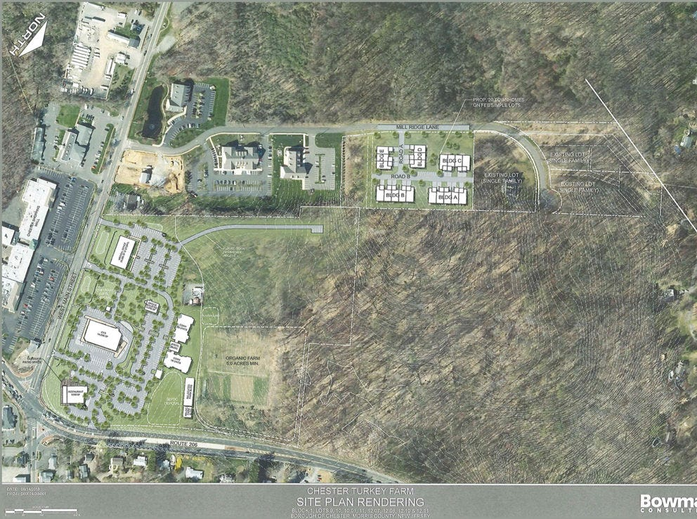 A rendering of a redevelopment proposal for the former Larison's Turkey Farm property and adjoining lots in Chester. A public meeting will be help to discuss the proposal on Sept. 18, 2018.