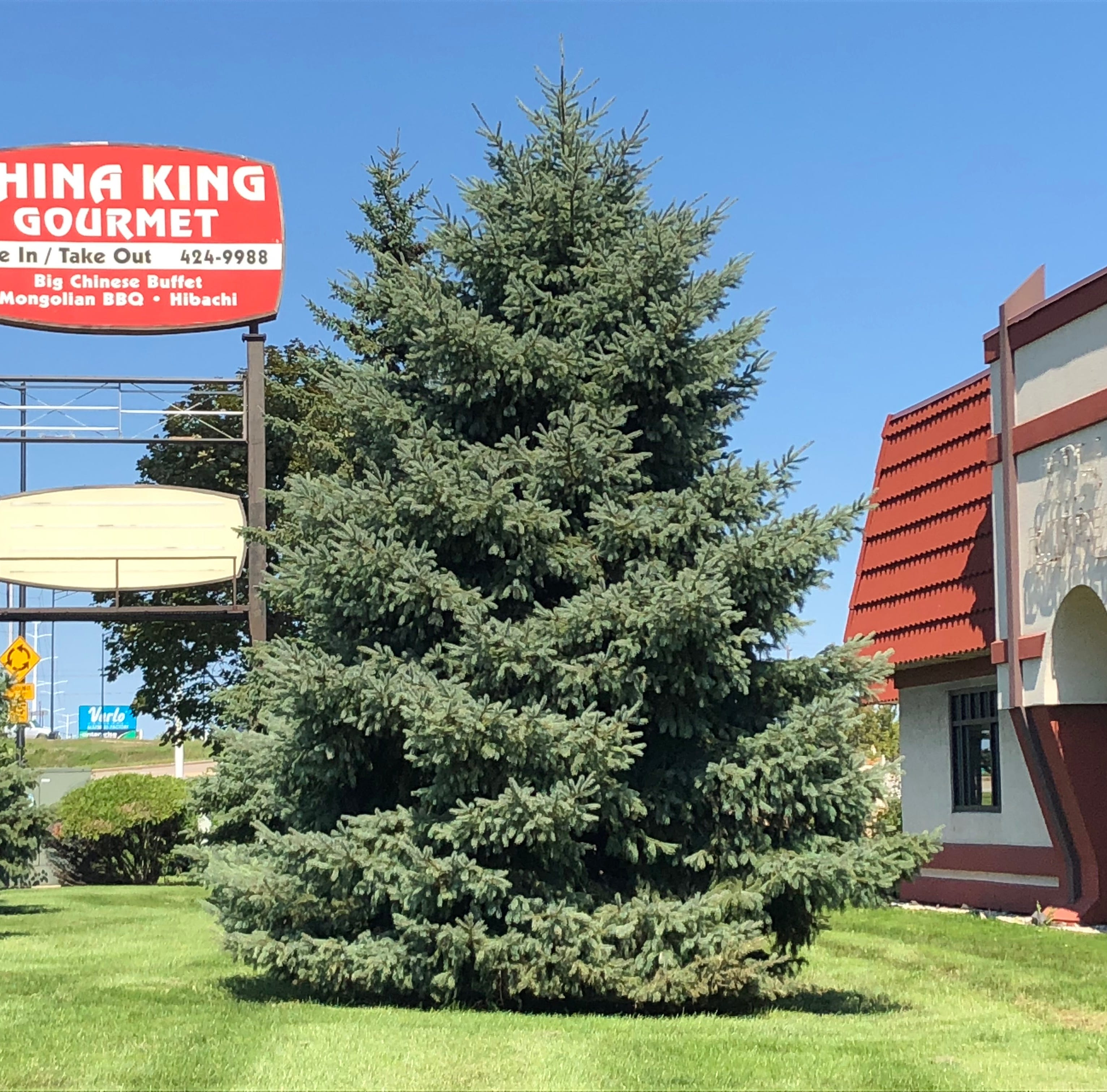 Streetwise: Halloween Express opens for season; China King closes for remodel