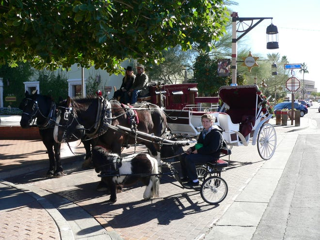 Scottsdale has asked Scottsdale Horse and Carriage to vacate the city-owned stable at Brown Avenue and Second Street by the end of the year.The city is ending its partnership with the business, which has provided free rides on Saturdays to residents and visitors in Old Town for years.