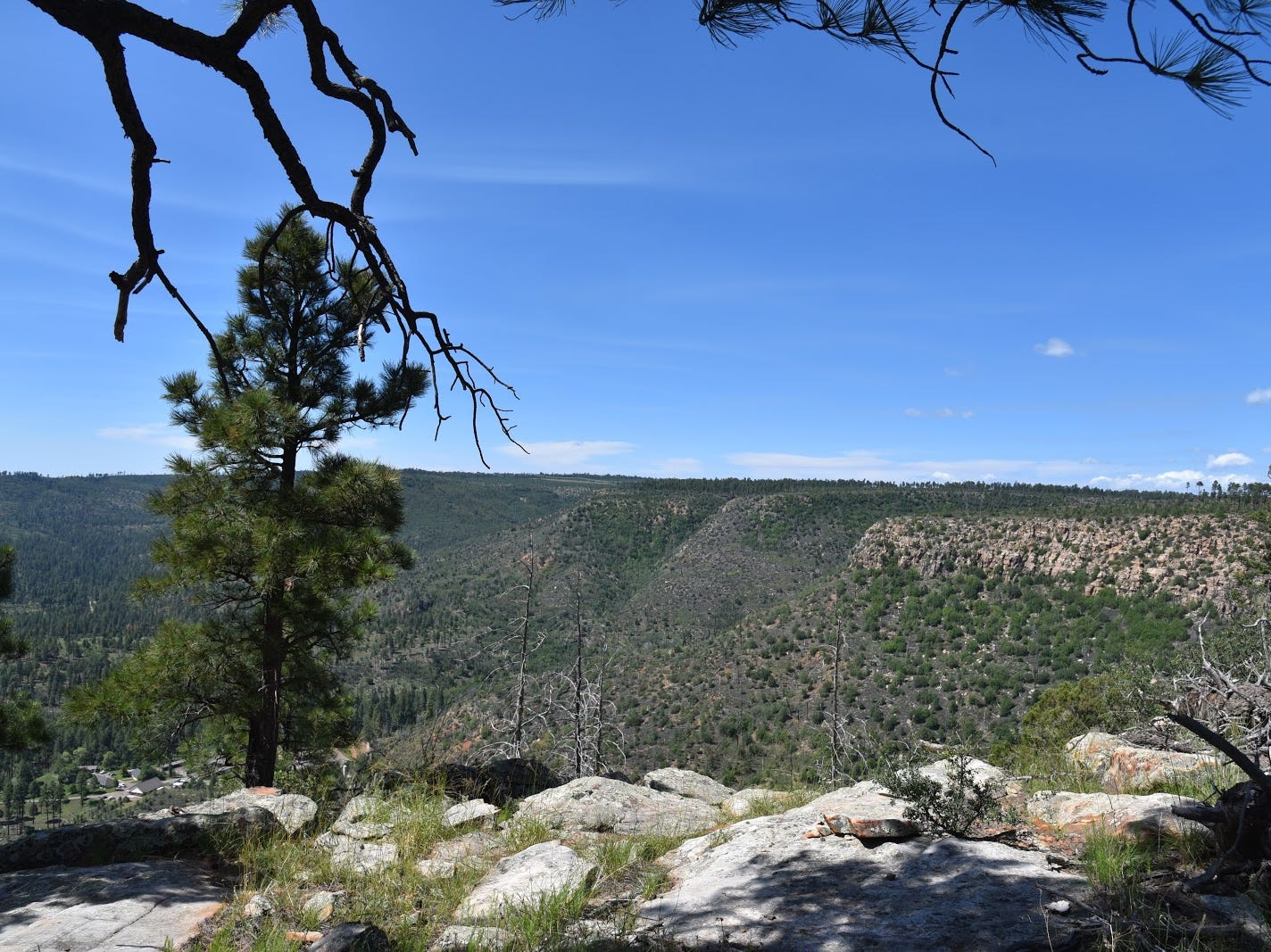 Sheep Creek Point overlooks Canyon and Sheep creeks on the Mogollon Rim.