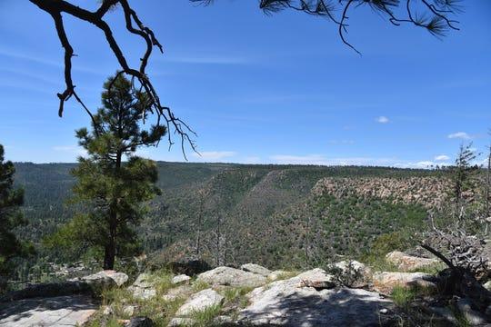 Sheep Creek Point overlooks Canyon and Sheep creeks on the Mogollon Rim.