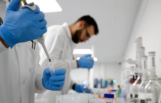 In this Wednesday, Aug. 22, 2018, photo, lab workers test marijuana samples at Cannalysis, a cannabis testing laboratory, in Santa Ana, Calif. Nearly 20 percent of the marijuana and marijuana products tested in California for potency and purity have failed, according to state data provided to The Associated Press.