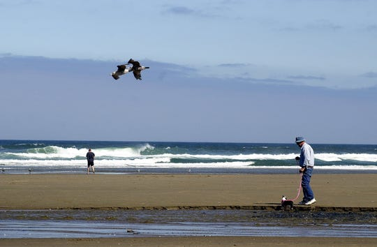 A health advisory has been lifted for D River Beach in Lincoln City.