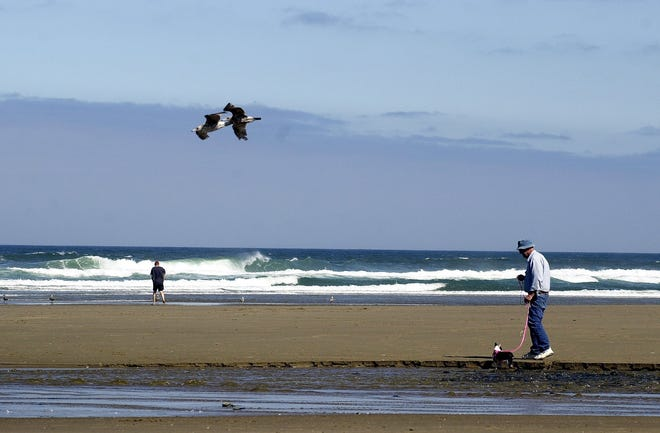 The health advisory has been lifted for D River Beach in Lincoln City.