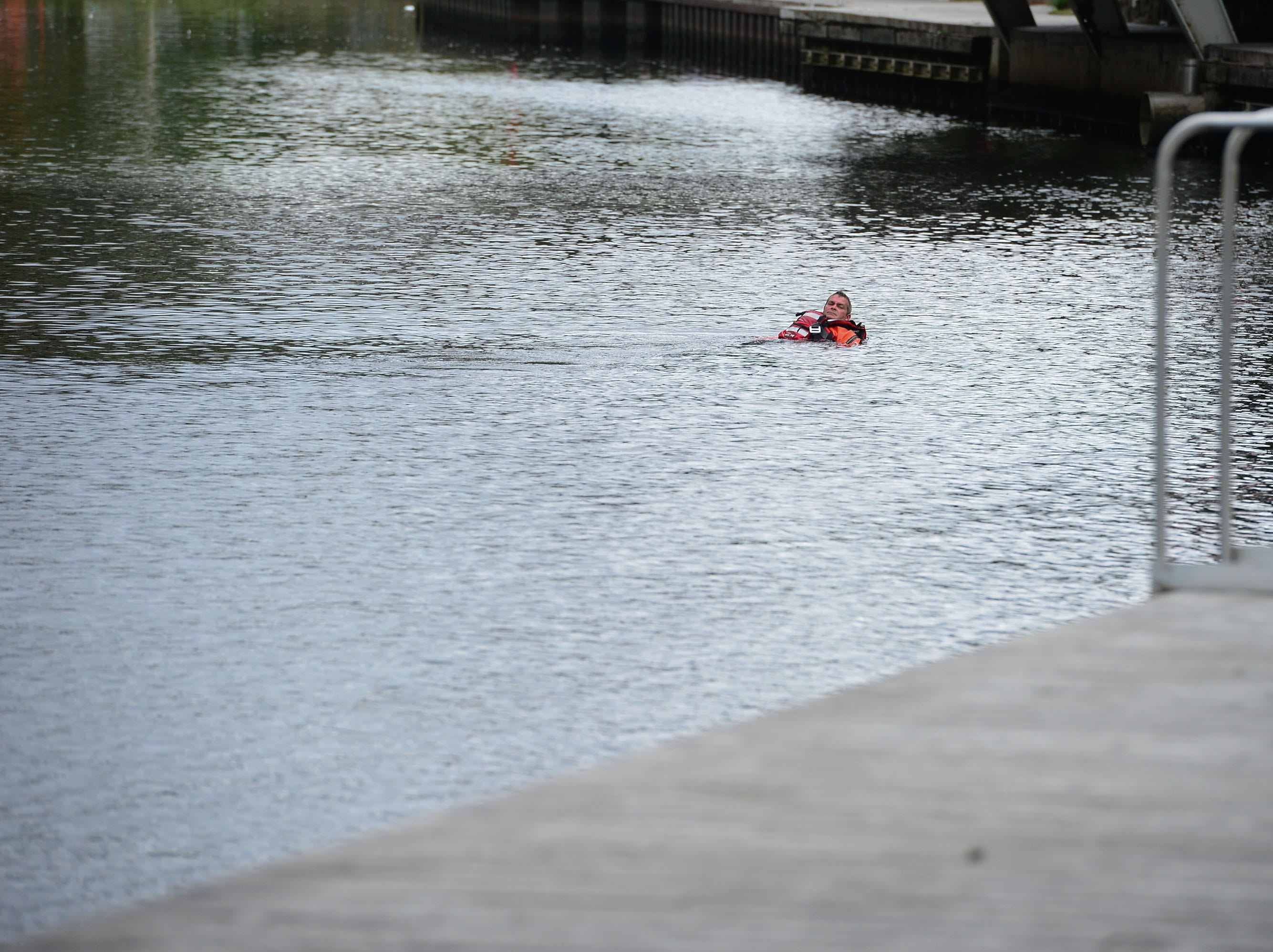 A Salisbury Fire Department diver swims back to shore after a body was found in the Wicomico River near South Division Street Bridge around 12:30 pm.
